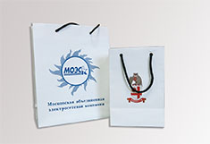Пакеты и коробки с нашим логотипом